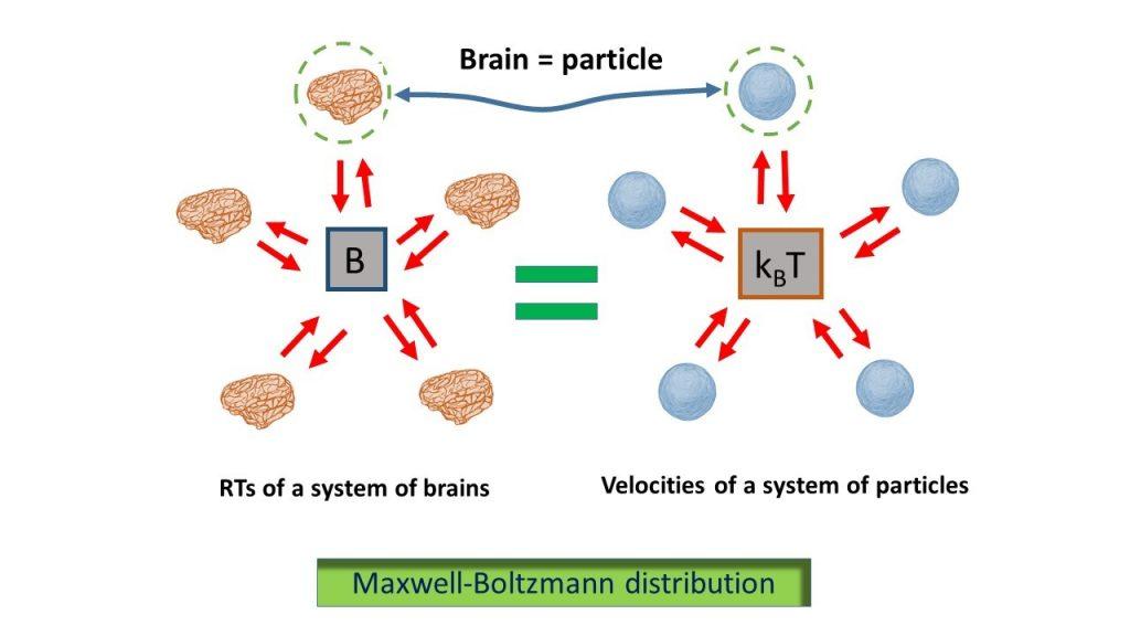 Maxwell Boltzmann distribution InvestMat